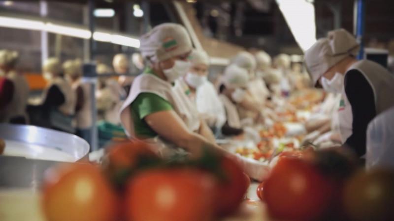 CAADES busca seguir impulsando la agroindustria en Sinaloa