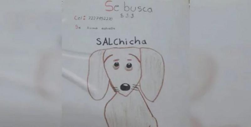 ¡Justo en el cora!: Niño busca a su mascota con un dibujo realizado por el