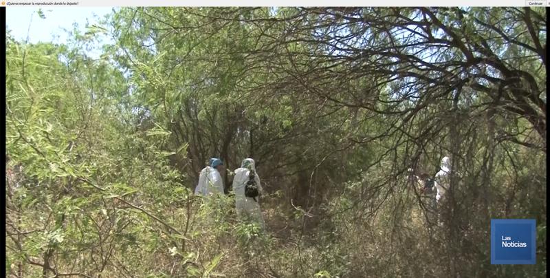 Reusan fosas de cuerpos : Madres Buscadoras de Sonora