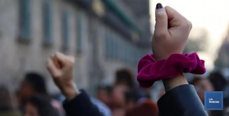 Activismo puede ser la causa de sus ataques: Silvia Núñez
