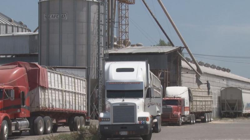 Avanza el esquema de comercialización para la cosecha de maíz de Sinaloa a través de Segalmex