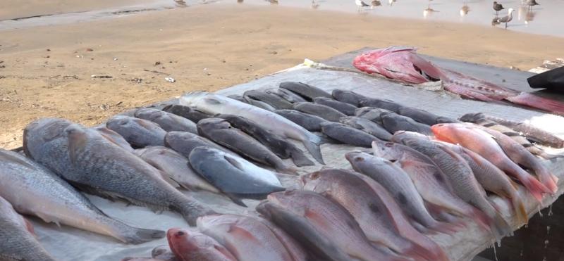 Bajan las ventas de pescados por cierre de restaurantes y comercios