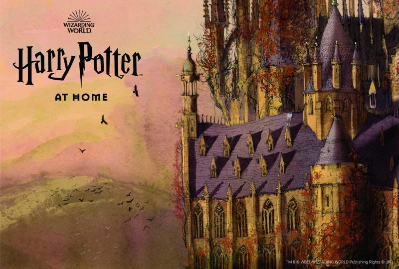 Lanzan Harry Potter at Home