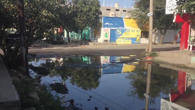 Se estanca agua potable en la Juárez