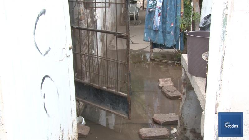 Viven contingencia con drenajes colapsados en sus viviendas