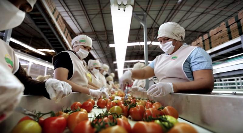 En crecimiento económico Sinaloa es 9°lugar nacional