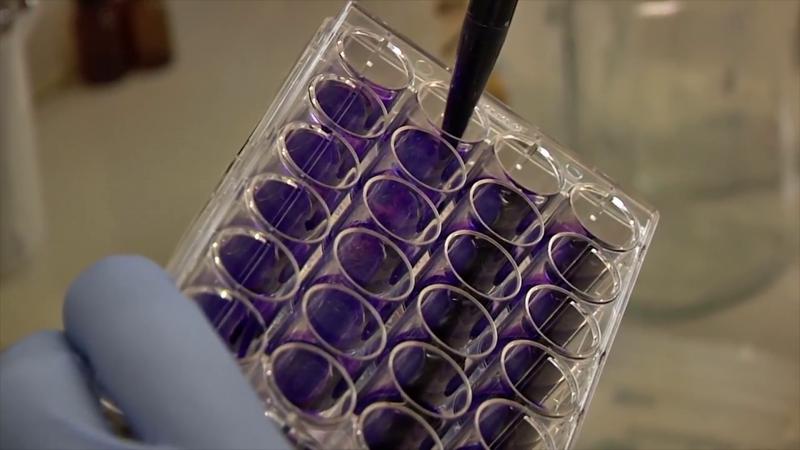 COEPRISS alerta sobre falsificación de medicamento antiretroviral