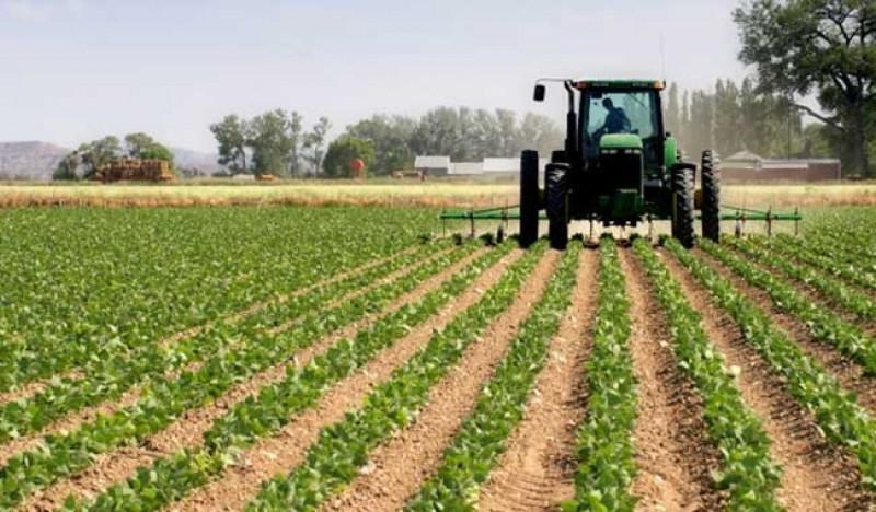 Dispersa SAyG más de 40 mdp a productores rurales