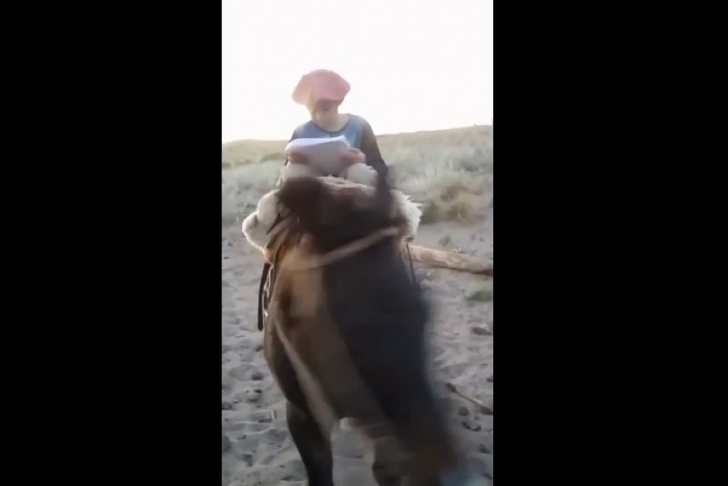 Niño recorre 30 km a caballo para tener Internet y entregar su tarea
