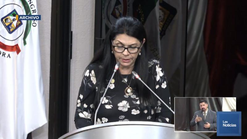 Quieren hacer una especie de feudos: Ernestina Castro en torno a propuesta electoral