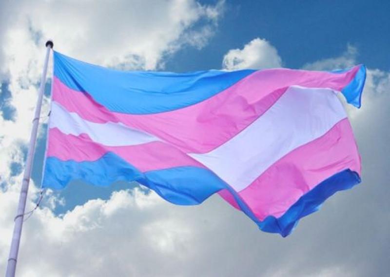 """Buscará INE, que personas """"trans""""no sean excluidas en procesos electorales"""