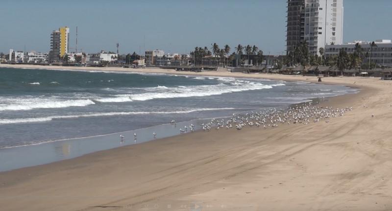 Detienen a surfistas por omisión