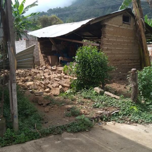 Nueve muertos, hasta hoy, deja el sismo...