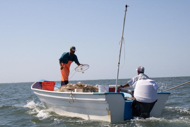 CONAPESCA realizará censo de embarcaciones
