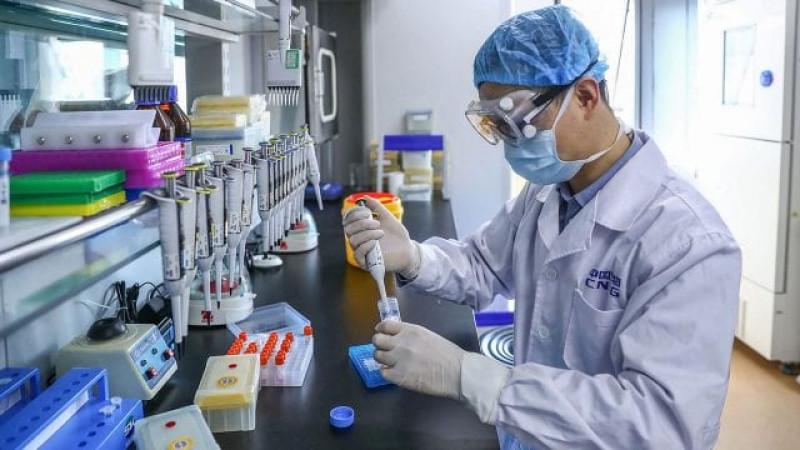 Científicos chinos alertan de otra preocupante gripe porcina