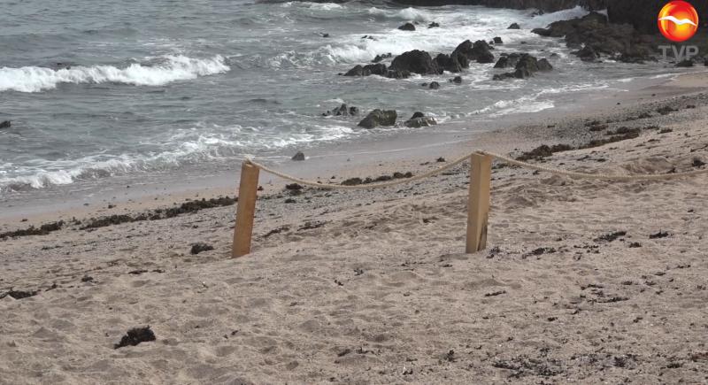 Delimitan perímetros en playas mazatlecas como prevención