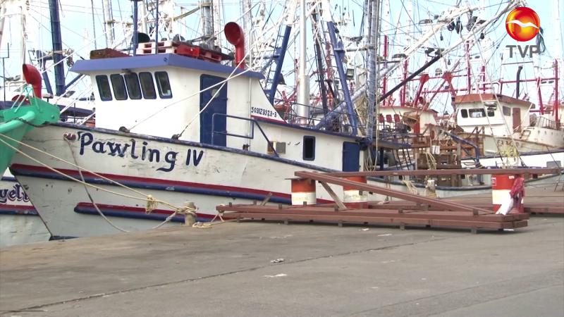 Sin apoyo el sector pesquero... podría acrecentar desempleo