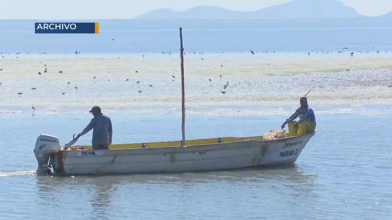 Pide Sergio Torres  que se reactiven programas federales para el sector pesquero