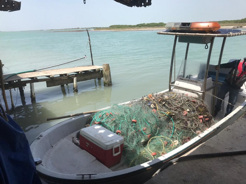 Conapesca retiene 213 toneladas de producto pesquero durante operativo