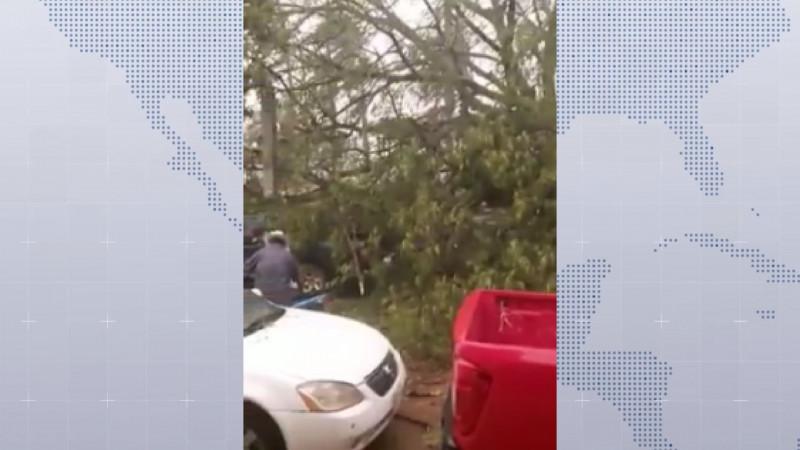 Tormenta del lunes alcanzó ráfagas de viento similar a un huracán categoría 1
