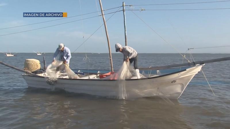 Cada día menos competitiva la actividad pesquera por falta de apoyos