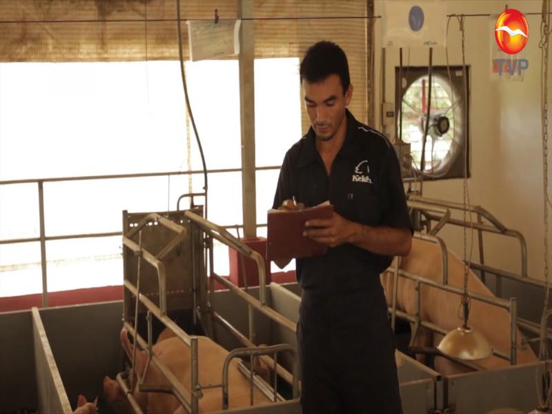 """Convocan al """"Premio Nacional de Sanidad Animal 2020"""""""