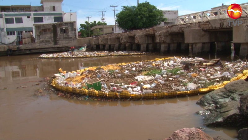 Resultados de la Ley Antiplásticos en Sinaloa