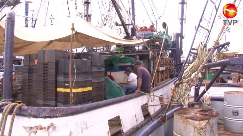 Pescadores esperanzados, realizan mantenimiento de barcos