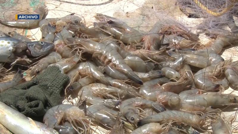 Con agrado reciben pescadores fecha de levantamiento de veda