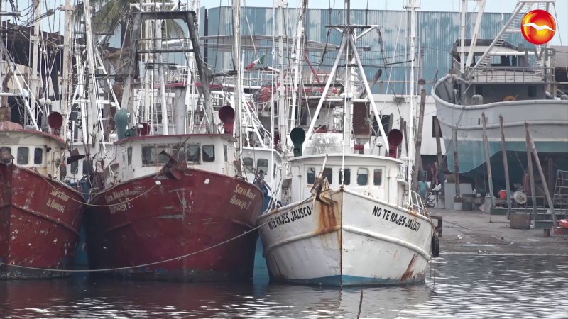 Descartan apoyos extraordinarios para la pesca en Mazatlán