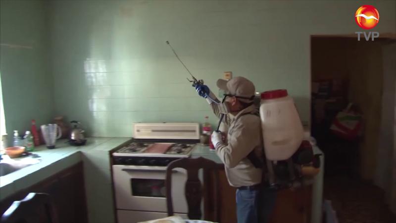 39 Casos de Dengue en zona sur de Sinaloa