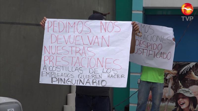 Advierte que será despedida la totalidad del personal en Acuario Mazatlán