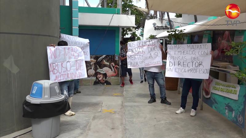 Niegan que se busquen bonos entre trabajadores de Acuario Mazatlán