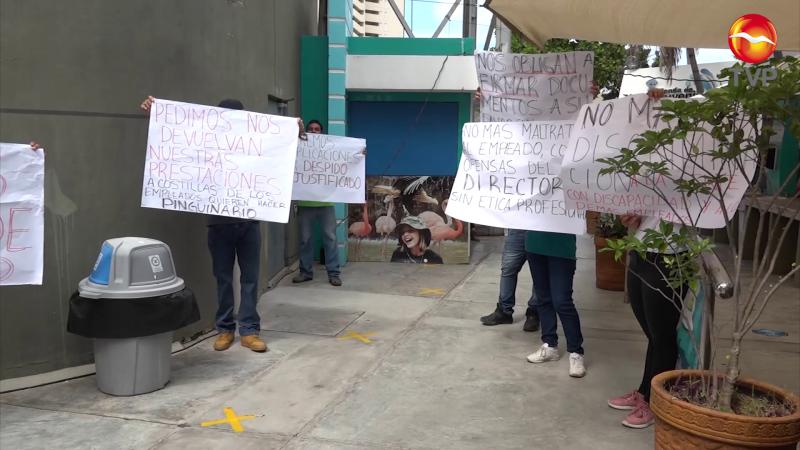 Deberá pagar Fideicomiso las liquidaciones en Acuario Mazatlán