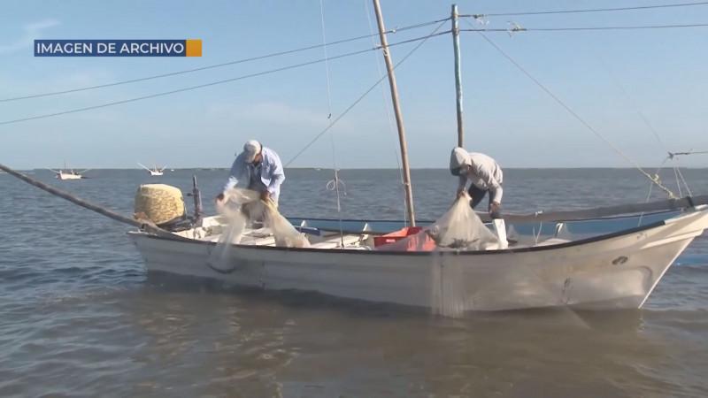 En el abandono el sector pesquero con el presupuesto federal