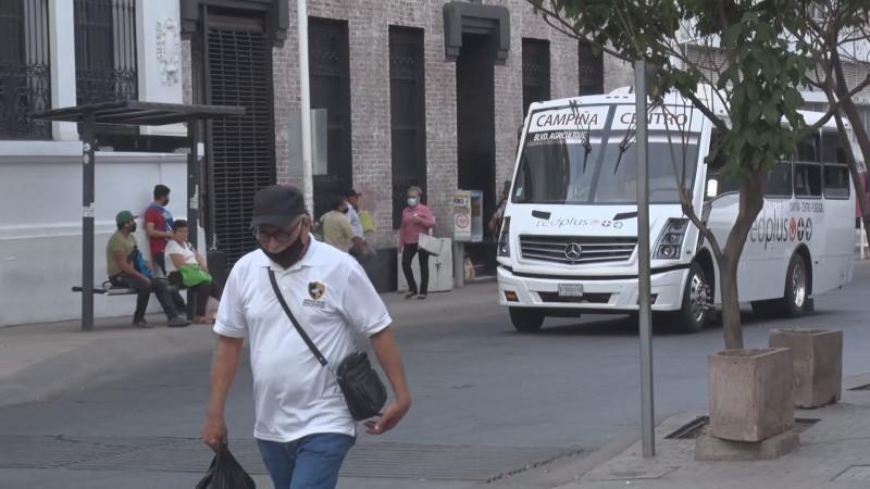 Incrementa en Sinaloa número de micro empleadores
