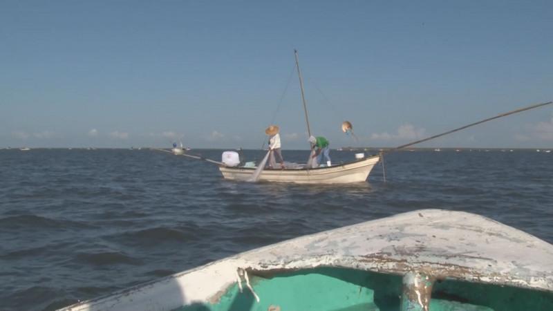 Para la pesca en Sinaloa buscan un presupuesto superior a 93 mdp