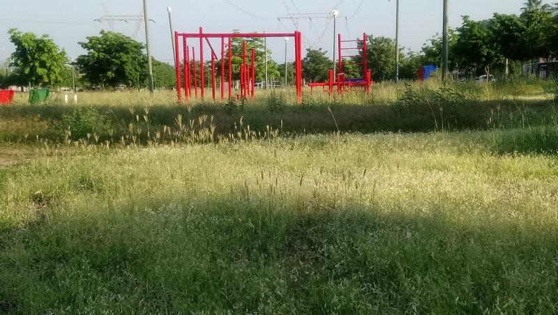 Maleza en el parque de la colonia Vista Hermosa