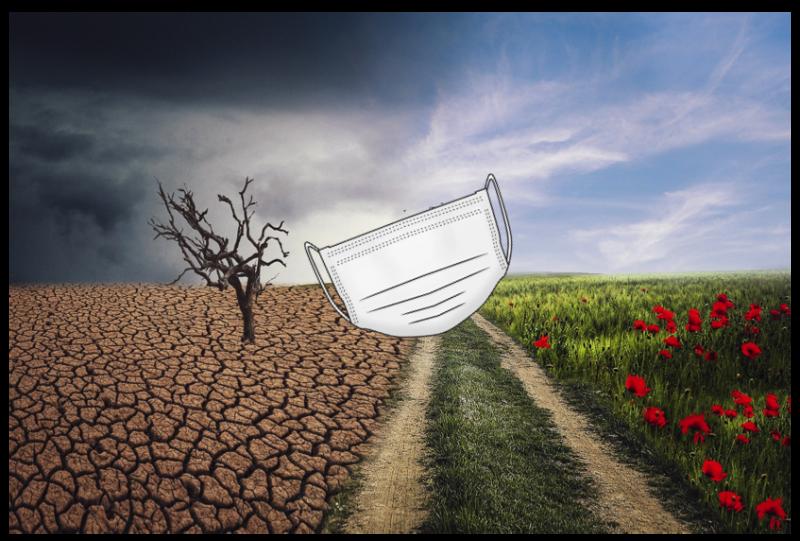 """La OMS asocia la pandemia al cambio climático: """"era cuestión de tiempo"""""""