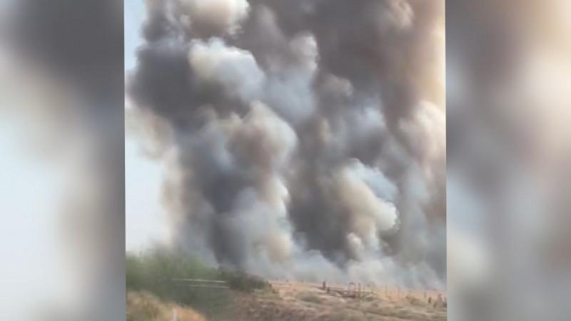 Llaman a legislar para evitar quema de espárrago