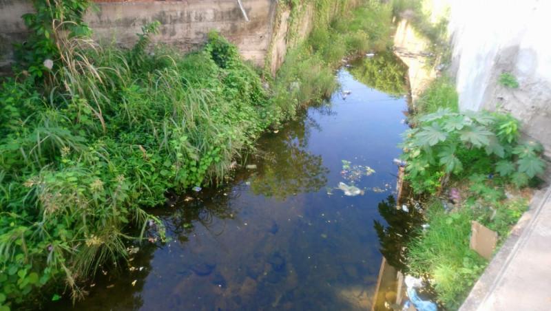 Arroyo con lama y agua estancada en la Emiliano Zapata