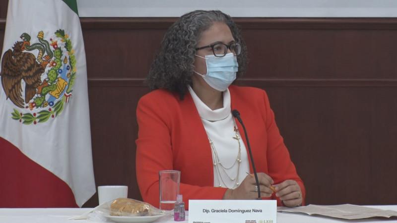 El estado sigue ausente en la búsqueda de personas desaparecidas en Sinaloa: Graciela Dominguez