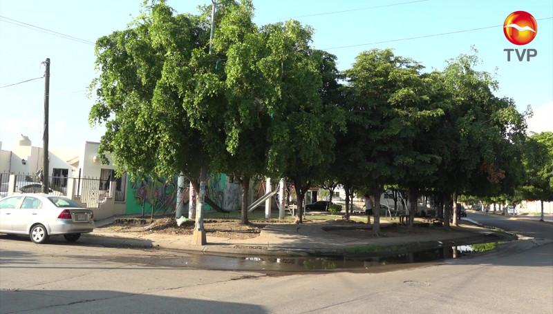 Urge rehabilitación de alumbrado público en el Fraccionamiento Los Sauces