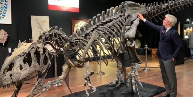 Venden este alosaurio en tres millones de euros