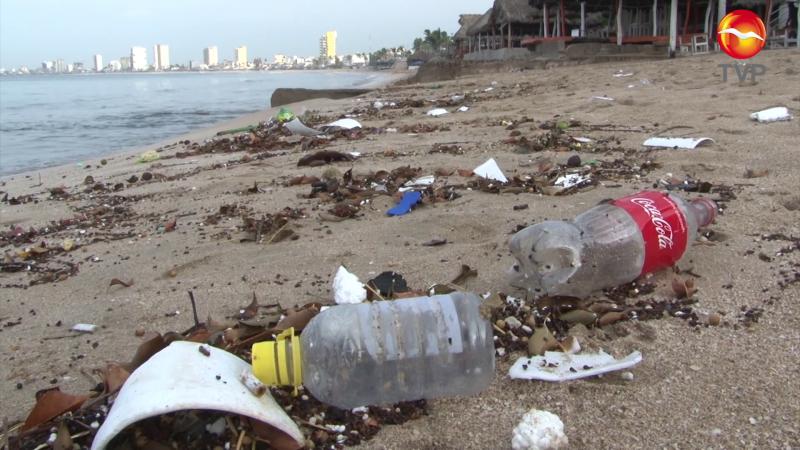 De manifiesto la falta de cultura ambiental