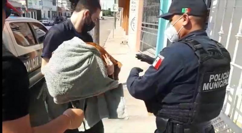 Rescata Policía Municipal a perrito herido con una flecha