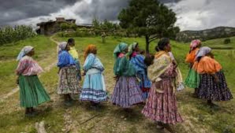 Partidos políticos no deben participar en elección de integrantes indígenas en cabildos