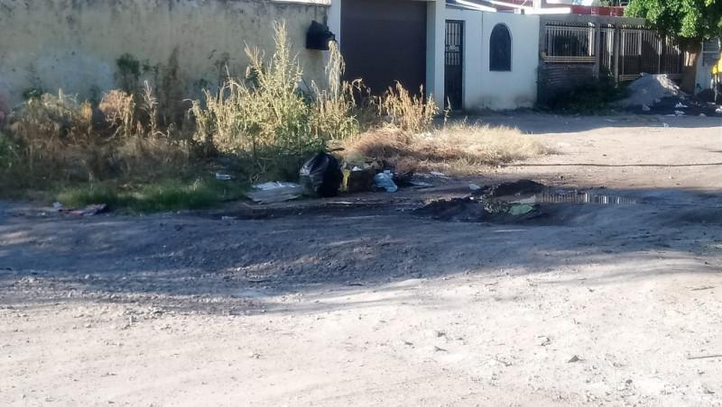 Con maleza y basura la calle Adolfo Ruiz Cortines de la colonia CNOP