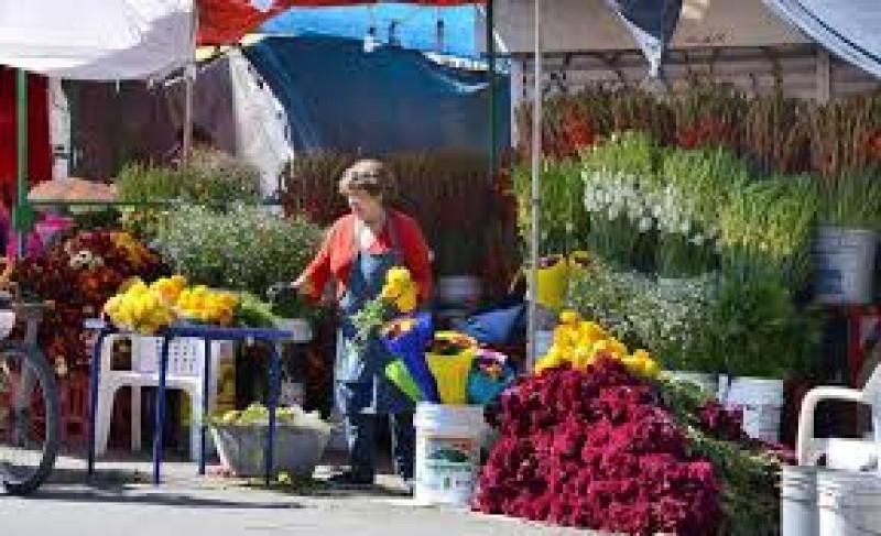 Dan a conocer los precios de las Flores para día de muertos en Los Mochis