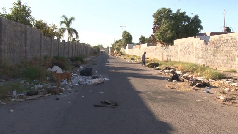 Por tercera vez tiran basura en la calle pedregal